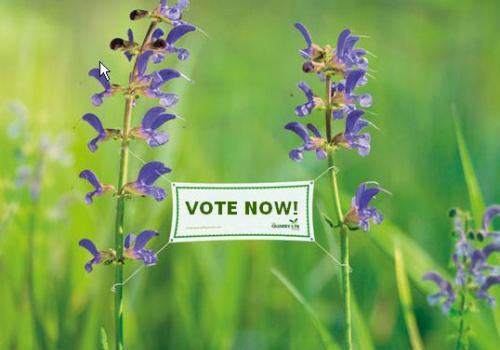 Vote and promote biodiversity in HeidelbergCement's quarries!